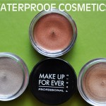 Waterproof Cosmetics Top Picks–On Portland's, AMNW