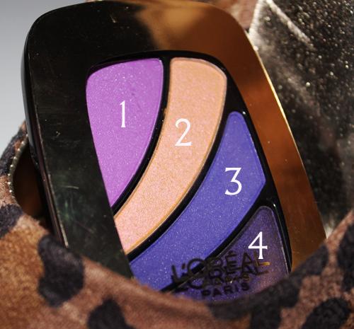 Loreal Paris Colour Riche Eyeshadow Hollywood Icon NEW LOreal Colour Riche Eyeshadow Quad and Caress Aqua Lip Lacquer Review