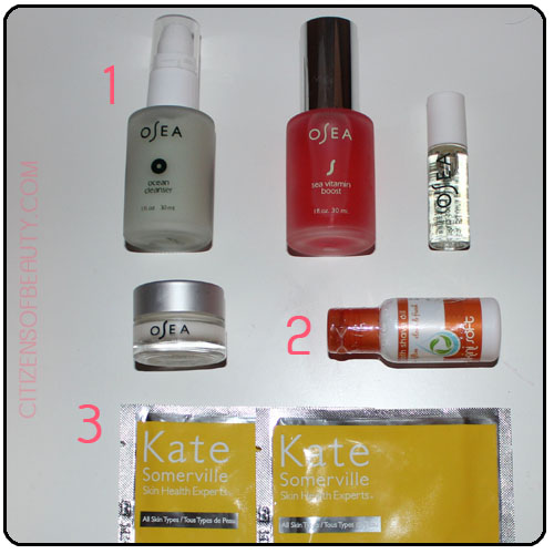 Traveling_Skincare_Sets copy