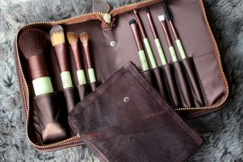 Professional Pixi brush set for only $49.00