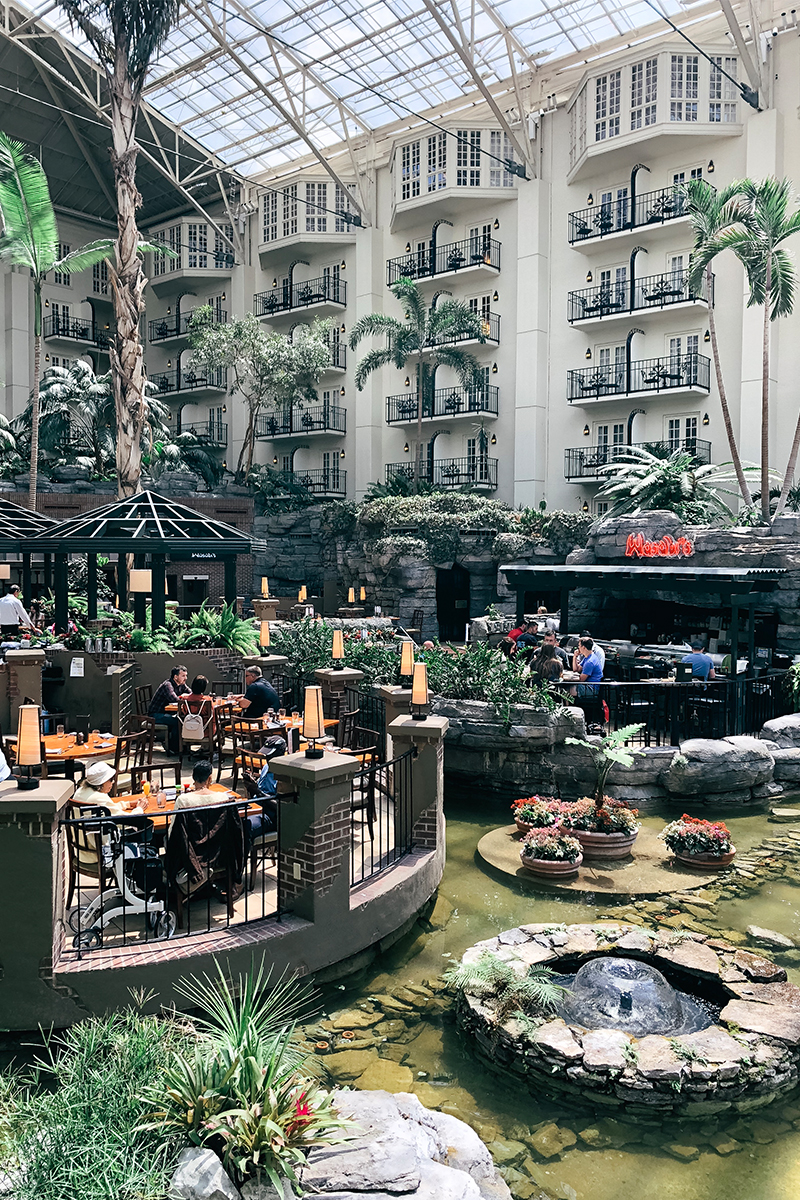 Where to eat at the Gaylord Opryland hotel and resort