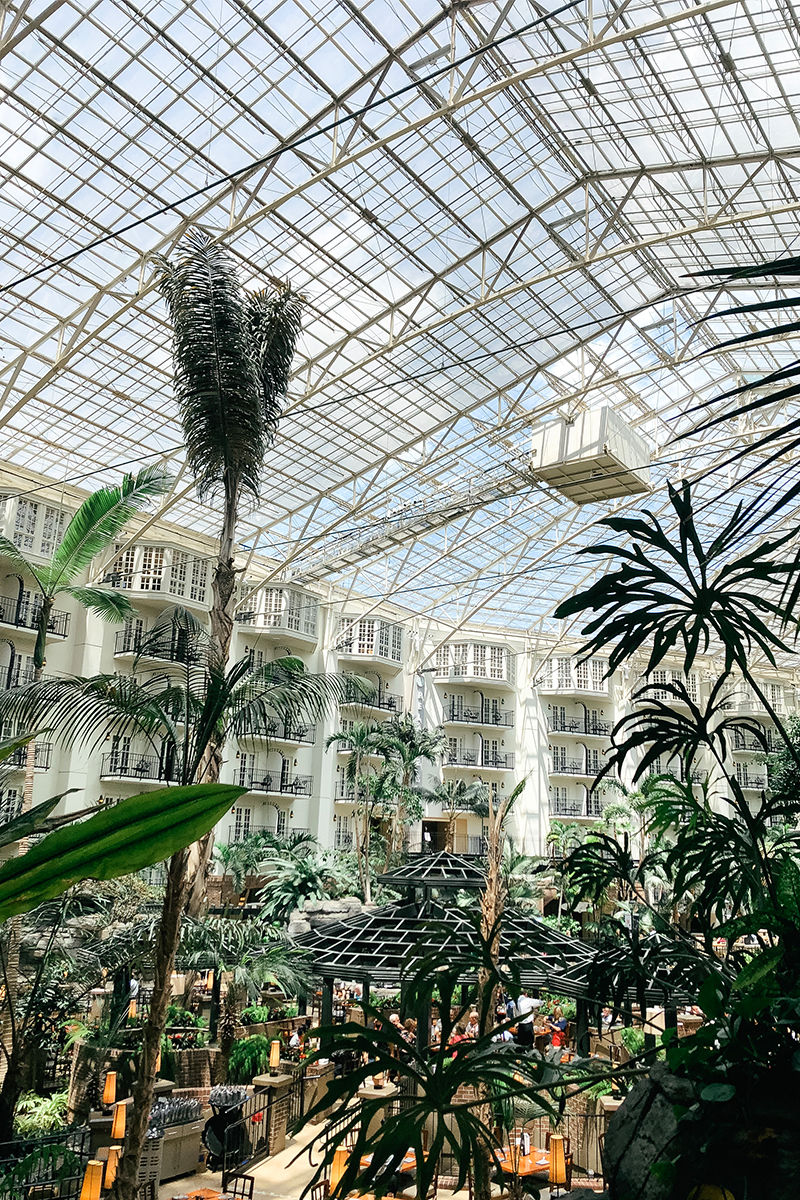 Staying at the Gaylord Opryland hotel and resort and what made it worth going to.